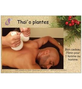 Thaï'o plantes